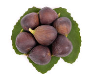 Delicious ripe green fig leaf Stock Photos