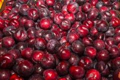 Delicious ripe juicy plums Royalty Free Stock Photos