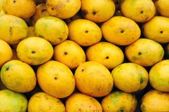 Delicious ripe mangoes Royalty Free Stock Photo