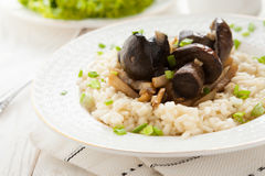 Delicious risotto with mushrooms and cream. Closeup Stock Images