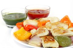 Delicious roasted fish, capsicum & onion with sauce Stock Image