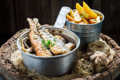 Delicious roasted herring fish with salt on old barrel Stock Photos