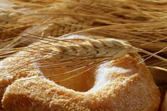 Delicious roll bakery sugar and wheat spikes Stock Image