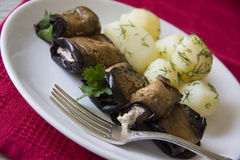 Delicious rolls of aubergines Stock Photography