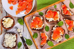 Delicious rye bread toasts with salmon stock image