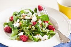 Delicious salad. Delicious and fresh salad with raspberries, goatcheese and pinenuts Royalty Free Stock Photos