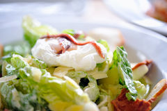 Delicious Salad 2 Royalty Free Stock Photos