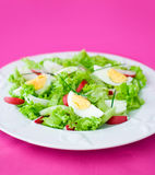 Delicious salad Royalty Free Stock Photos