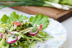 Delicious salad of cucumber and radish with lettuce. Spring juicy delicious salad of cucumber and radish with lettuce closeup Stock Image