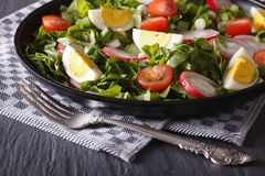 Delicious salad with eggs, radishes and sorrel close up Royalty Free Stock Photography