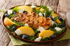 Delicious salad of grilled chicken breast with fresh peaches, bl Royalty Free Stock Image
