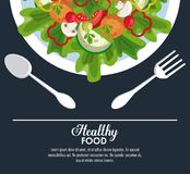 Delicious salad healthy food. Banner with information vector illustration graphic design Stock Image