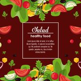 Delicious salad healthy food. Banner with information vector illustration graphic design Stock Photography
