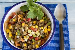 Delicious salad of lentils Royalty Free Stock Photo