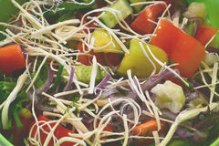 Delicious salad. Tasty vegetable salad with cheese and onions Stock Image