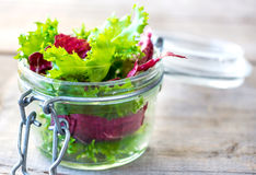Delicious Salad Stock Photography