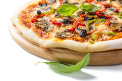 Delicious salami, mushroom and vegetable pizza Royalty Free Stock Photography