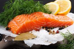 Delicious salmon fillet, rich in omega 3 oil Royalty Free Stock Photos