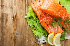 Delicious salmon fillet, rich in omega 3 oil Royalty Free Stock Photography