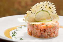 Delicious salmon tartar Royalty Free Stock Photography