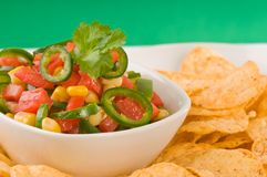 Delicious Salsa Royalty Free Stock Photos