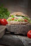 Delicious sandwich Stock Image