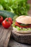 Delicious sandwich Royalty Free Stock Photos