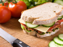 Delicious sandwich Stock Image