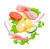 Delicious sandwich ingredients Royalty Free Stock Image