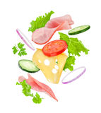 Delicious sandwich ingredients fall Stock Photos