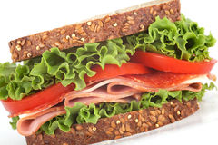 Delicious sandwich Stock Photography