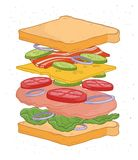 Delicious sandwich with layers or ingredients isolated on white background - bread slices, vegetables, salad leaves. Cheese, bacon, meat. Realistic drawing of vector illustration