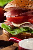 Delicious sandwich with prosciutto ham, cheese and vegetables Royalty Free Stock Images