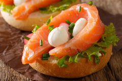 Delicious sandwich with salmon, mozzarella cheese and radish clo Stock Photos
