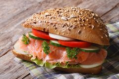 Delicious sandwich with salmon and vegetables close up Stock Photography