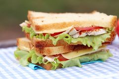 Delicious sandwich. And some apples on a napkin Royalty Free Stock Photos