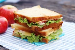 Delicious sandwich. And some apples on a napkin stock photo