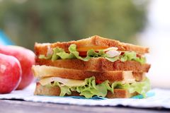 Delicious sandwich. And some apples on a napkin Stock Images