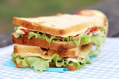 Delicious sandwich. And some apples on a napkin stock photography