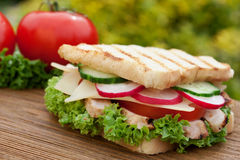 Delicious sandwich Stock Images