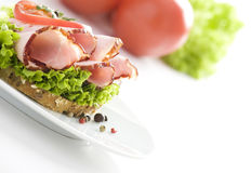 Delicious sandwich & tomatoes Royalty Free Stock Images