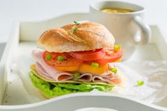 Delicious sandwich with tomatoes, cheese and ham Stock Image