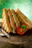 Delicious Sandwich on wooden table Stock Images