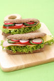 Delicious sandwiches Stock Image
