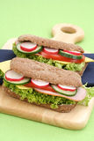Delicious sandwiches Royalty Free Stock Photos