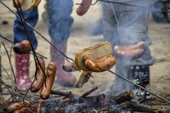 Delicious sausages baked on a campfire in the forest. Some sausages roasted on fire Stock Photo
