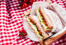 Delicious savory salad sandwiches Stock Images