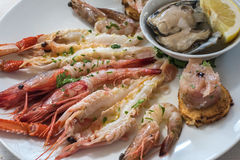 Delicious seafood carpaccio with langoustines. Delicious raw seafood carpaccio with langoustines Stock Images