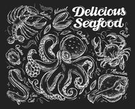 Delicious seafood. Hand drawn sketch octopus, crab, fish, flounder, eel, oyster, mussel, lobster. vector illustration