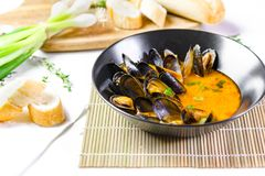 Delicious seafood mussels with red sauce and green onions stock photography